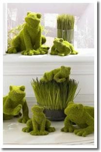 Moss Frogs